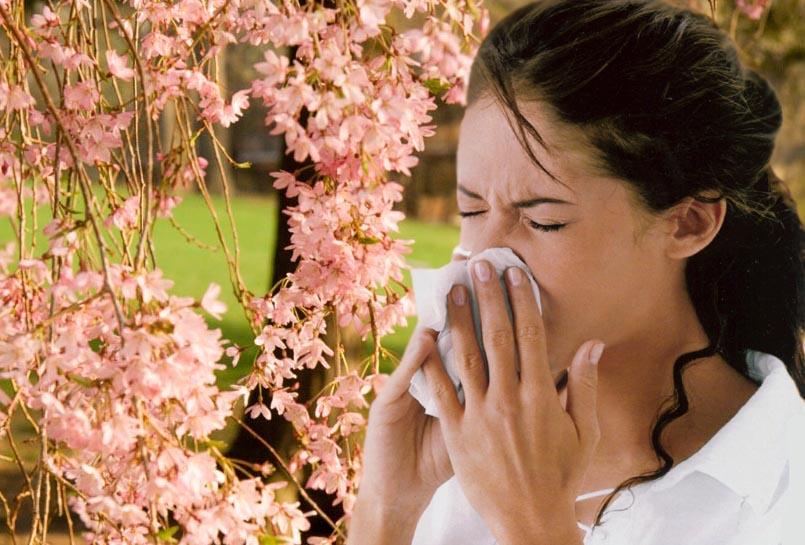 Chảy dịch mũi dấu hiệu viêm mũi dị ứng thường gặp