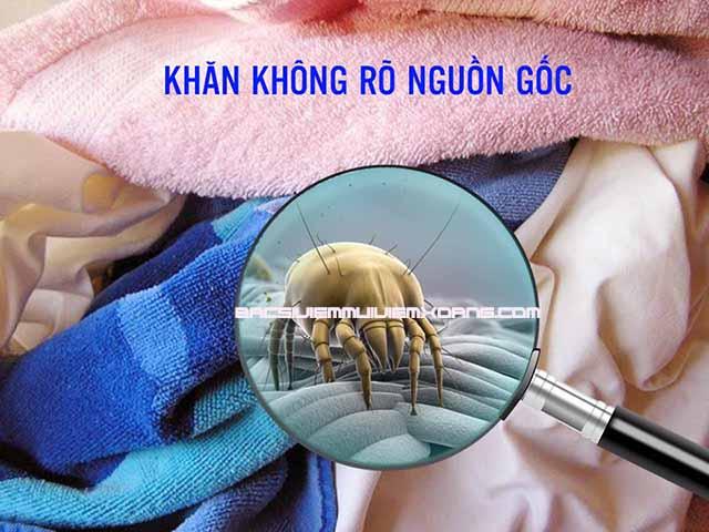 Mạt nhà là một trong các nguyên nhân gây bệnh viêm mũi dị ứng