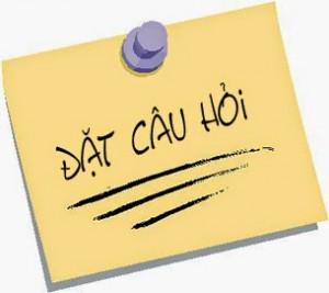 dat-cau-hoi (1)
