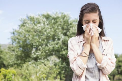 Dị ứng kéo dài cũng là nguyên nhân khiến viêm xoang cấp xảy ra