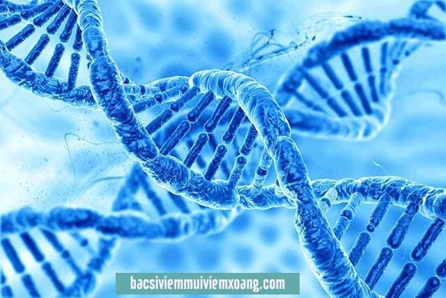 Viêm mũi dị ứng chữa mãi không khỏi là do gen di truyền