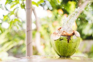 Duy trì thói quen uống nước dừa khi bị viêm họng