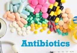 Kháng sinh chỉ chữa ức chế tạm thời vi khuẩn gây viêm họng mãn tính