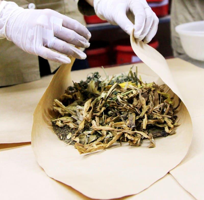 Bài thuốc Đông y chữa bệnh ho