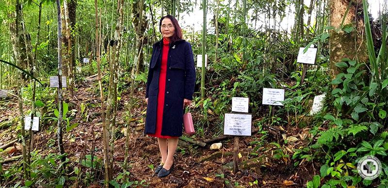 Bác sĩ Lê Phương tại vườn thuốc Hà Giang